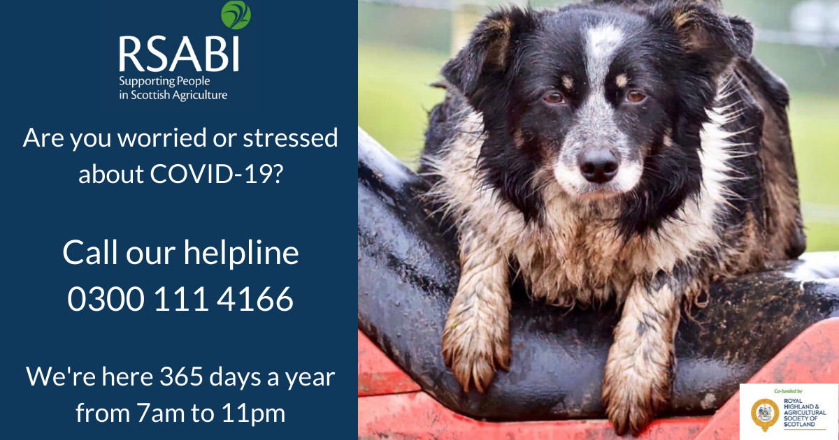 Infographic with helpline information and a photo of a muddy sheepdog sitting on a quad bike